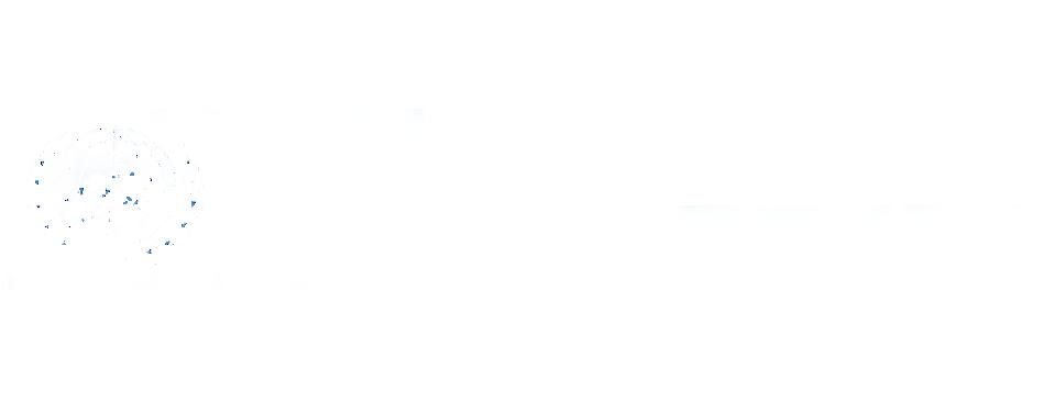 UN Volunteer